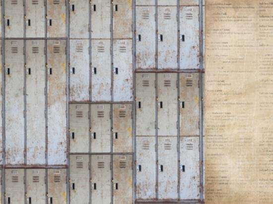 Picture of Documented - Lockers